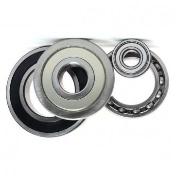 NSK NTN Koyo NACHI China Double Rows Angular Contact Ball Bearing 3309-a 3056309 3309