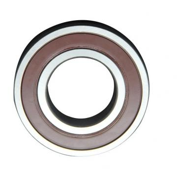 FAG F-562034.01 61805 Special Bearings for Printing Machines