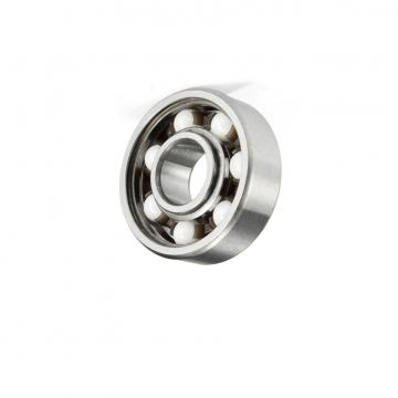 Japan NSK Rubber sheiled Deep groove ball bearings 6004 6004DDU with red color NSK 6004DU bearing
