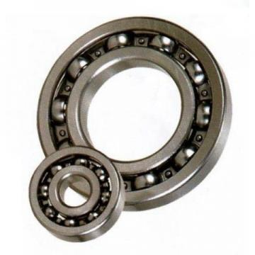 Full Ceramic Bearing of Zro2 Material