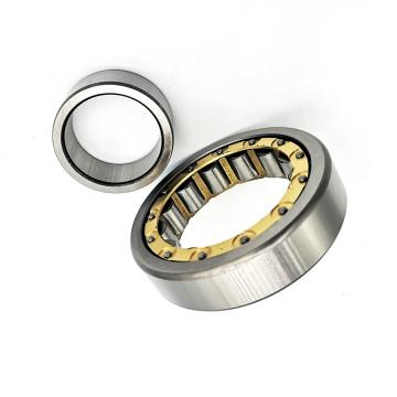 SKF NSK NACHI Koyo Spherical Roller Bearing 23176 Ca/Cak Mbw33c3